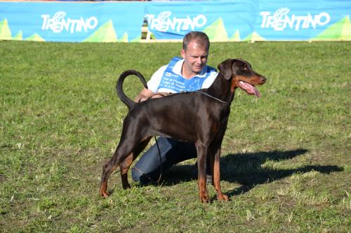 IDC-Weltsiegerschau 15./16.09.2012 in Lago di Tesero, Italien